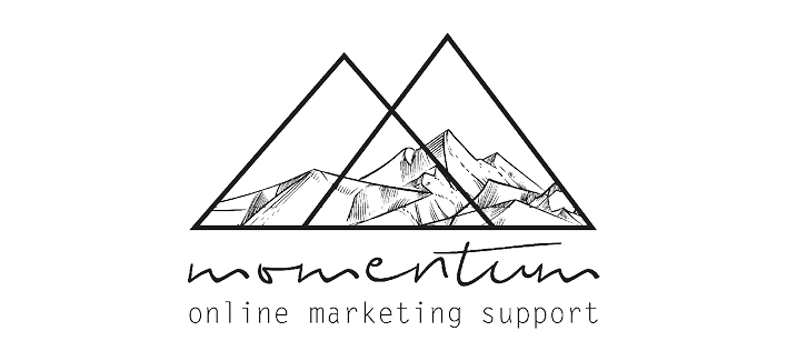 Momentum Marketing